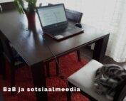 B2B ja sotsiaalmeedia