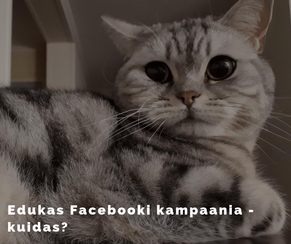 Edukas Facebooki kampaania
