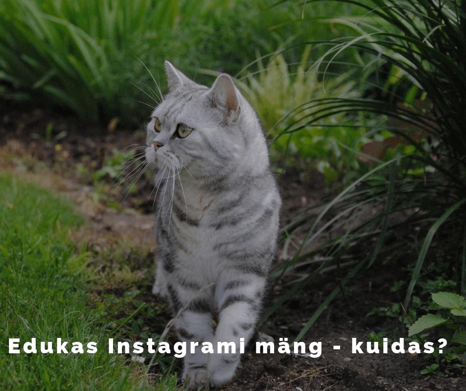Instagrami mäng ja reeglid