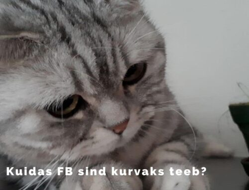 Kuidas Facebooki uudisvoog sind kurvaks teeb?