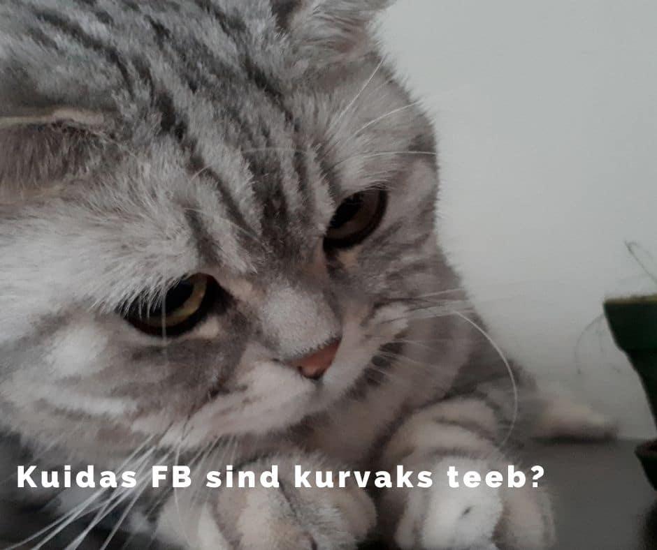 Facebook teeb kurvaks